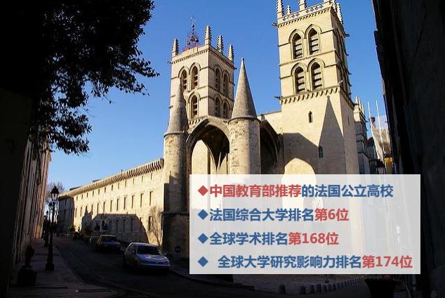 蒙彼利埃大学DBA(上海班)